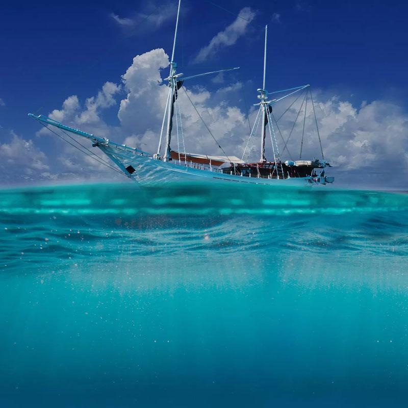 Infinite Blue Dive Travel